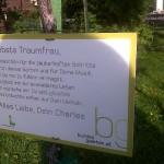 Love Letter on Roses in Vienna's Volksgarten