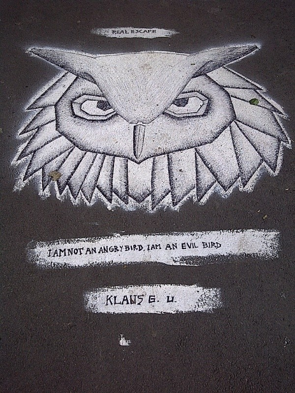 I am not an Angry Bird, I am an Evil Bird - Klaus G.U. Pavement Danube Kanal, Vienna, Austria, 2014