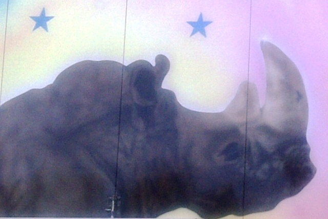 Because rhinos deserve art too